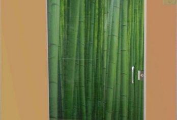 דלת זכוכית עם הדפס במבוק